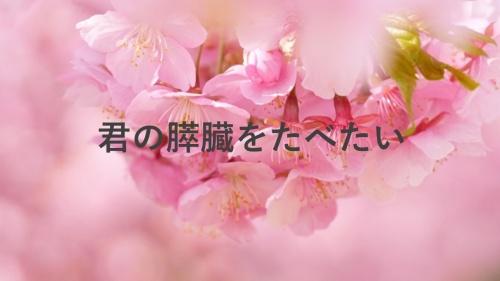映画『君の膵臓をたべたい』の桜